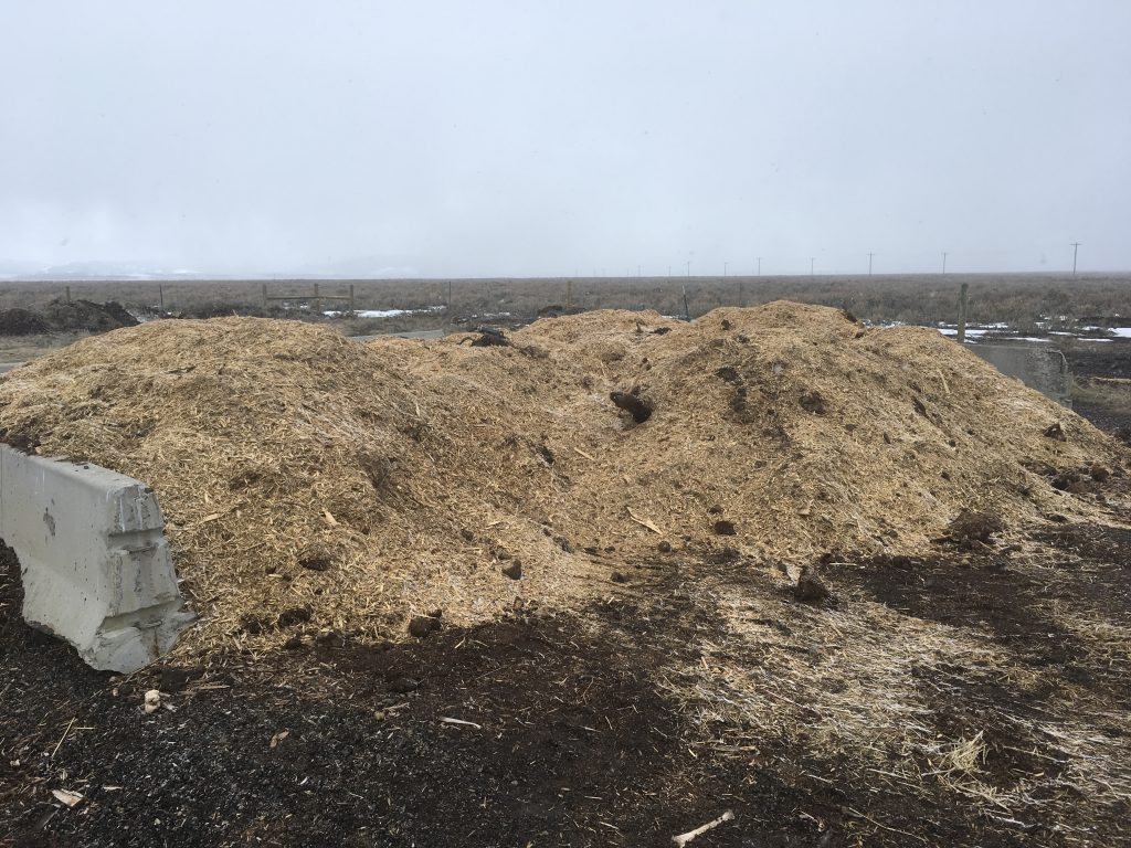 A full compost bin.