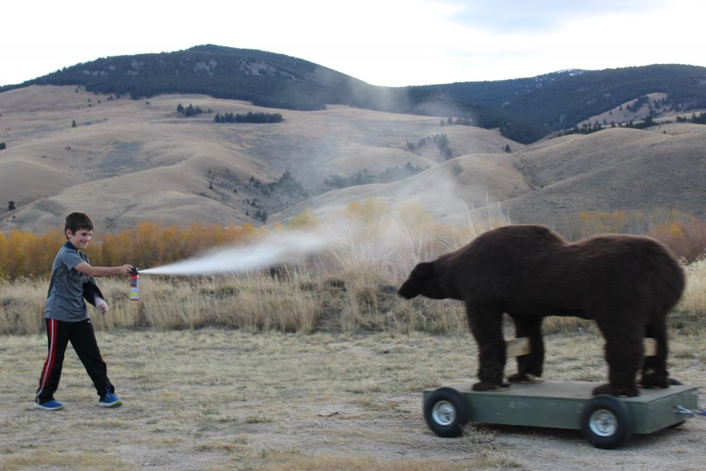Bear Safety Training, 2017
