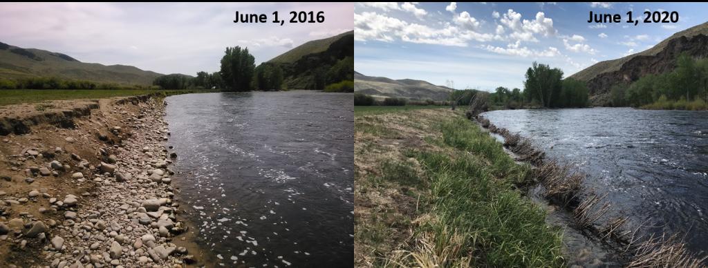 Weststeyn Bank Restoration, before and after.