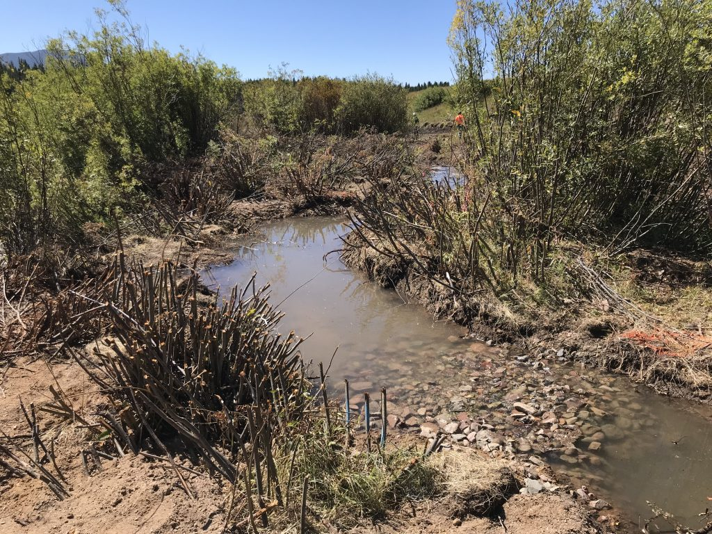 These constructed riffles were placed in strategic locations throughout the project area. These structures are designed to allow overbank flows and floodplain activation. They also help to create pools and instream complexity, good for fish habitat!
