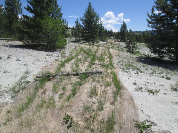 California Creek fabric strip with 3 amended trenches