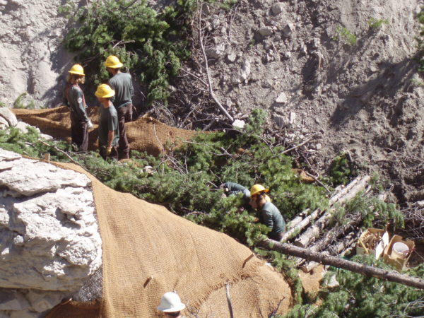 Montana Conservation Corps members building check dams