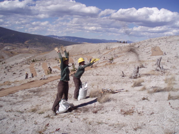 Montana Conservation Corps members spread fertilizer with feeling!